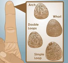 The Secret Behind Fingerprint