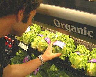 Consuming Organic Food